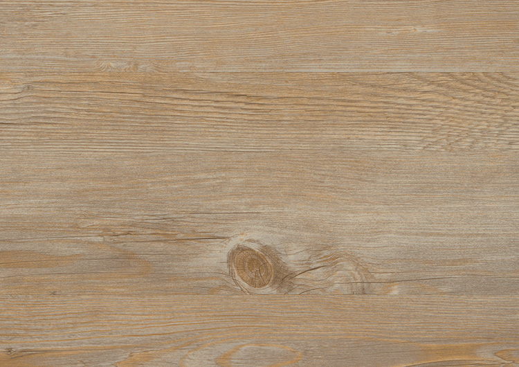 Toscany Pine | wineo 600 wood